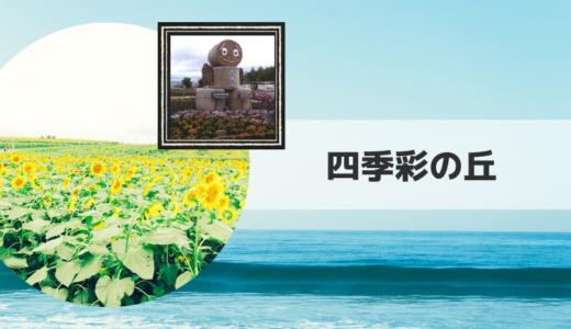 2019|四季彩の丘 ひまわり畑の見頃時期・開花状況とアクセス方法【北海道】