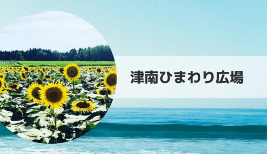 2019|津南ひまわり広場の見頃時期・開花状況とアクセス方法【新潟県】