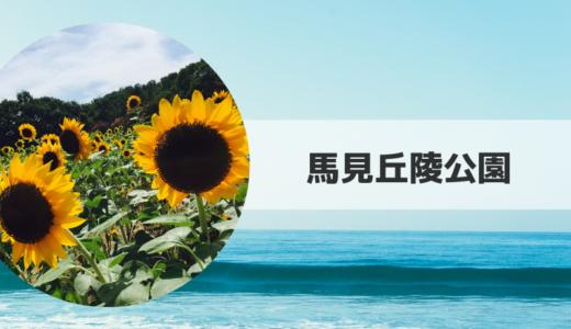 2019|馬見丘陵公園ひまわり畑の見頃時期・開花状況とアクセス方法【奈良県】