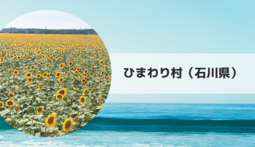 2019|ひまわり村(石川県)の見頃時期・開花状況とアクセス方法【石川県】