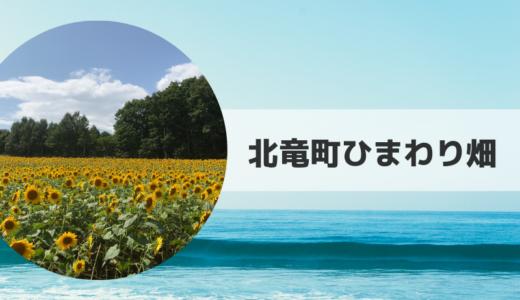 2019|北竜町ひまわり畑の見頃時期・開花状況とアクセス方法【北海道】