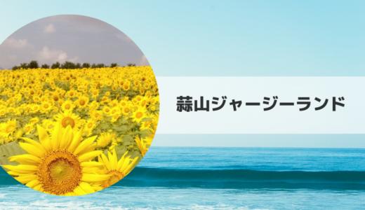 2019|蒜山ジャージーランドひまわり畑の見頃時期・開花状況とアクセス方法【岡山県】